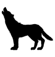 silhouette of wolf vector image vector image