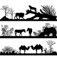 wild animals lion horse pony zebra camel in differ vector image