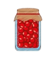 Canned fruit preserves product vector image