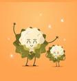 cute fresh cauliflower characters tasty mascot vector image