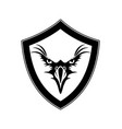 eagle design black with shield vector image vector image