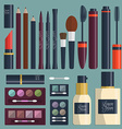 Large collection of womens cosmetics on the table vector image