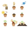 Planting The Seed Sequence vector image vector image