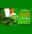 saint patricks day irish flag beer and shoes vector image