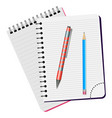 two notebooks red pen and blue pencil vector image