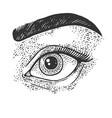 beauty woman eye sketch vector image vector image