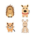 color animals on a farm and pets vector image