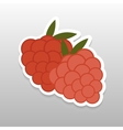 Flat sticker berry vector image