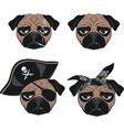 set funny pug vector image