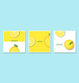 set of fruit banners with lemon in paper art style vector image vector image