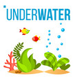 underwater world bottom fish seaweed vector image