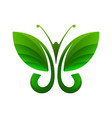green butterfly leaf shape vector image vector image