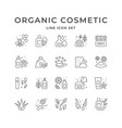 set line icons organic cosmetic vector image