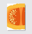slice fresh cut pumpkin silhouette on white vector image