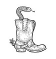snake in a cowboy boot sketch vector image