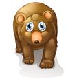 A brown bear vector image vector image