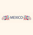 beautiful design about mexico vector image vector image