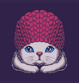 cute cat beanie hat vector image vector image