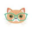 cute cat wearing glasses funny cartoon animal vector image vector image