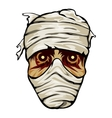Ghoulish face of a mummy wrapped in bandages vector image vector image