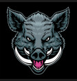 hand drawn style angry wild hog head vector image