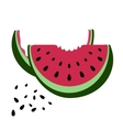 Icon of watermelon vector image