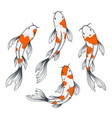 koi fish set vector image