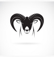 mountain goat head design on white background vector image vector image