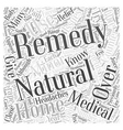 Natural Remedies Why You Should Give Them a Try vector image vector image