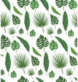 palm leaf vector image