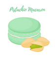 pistachio macaron with meringue cream vector image vector image