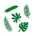 set tropical leaves jungle foliage green palm vector image vector image
