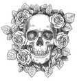 skull with flowers sketch human with roses vector image