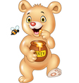 Cute baby bear holding honey pot isolated vector image vector image