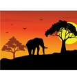 elephant silhouette vector image vector image