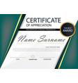 green elegance horizontal certificate vector image vector image