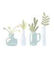 set flat hand drawn glass vases and cans vector image vector image