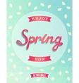Spring retro poster enjoy now vector image