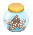 cartoon starfish sleeping in a glass jar isolated vector image vector image