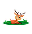 cute little deer sitting in grass vector image vector image