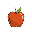 delicious and healthy apple fruit vector image vector image