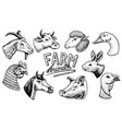 farm animals head a domestic horse pig goat vector image vector image