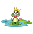 frog and water vector image vector image