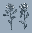 two roses with thorns monochrome tattoo style vector image vector image