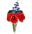 Bouquet of poppies and delphinium vector image