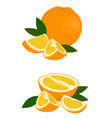 orange whole half and slice of orange with leaves vector image vector image