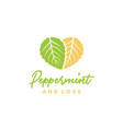 peppermint mint leaves and heart love logo design vector image vector image