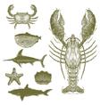 Woodcut Sea Creatures vector image