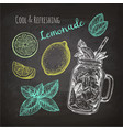 chalk sketch of lemonade vector image vector image