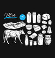 dairy products collection vector image vector image